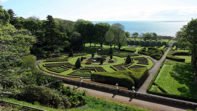 Een taxushaag voor moderne tuinen u de taxus baccata u woontips